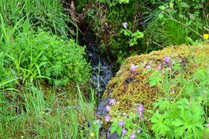 Natur 1 Norwegen
